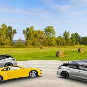 Juhannuspähkinämme on monille kesäreissujen automatkoilta tuttu leikki: autojen laskeminen. Nyt silmä tarkkana tutkimaan: Montak...
